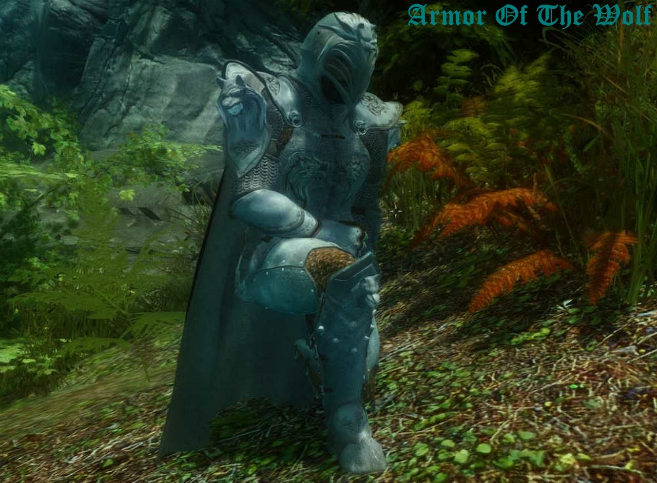 Armor Of The Wolf 01.jpg