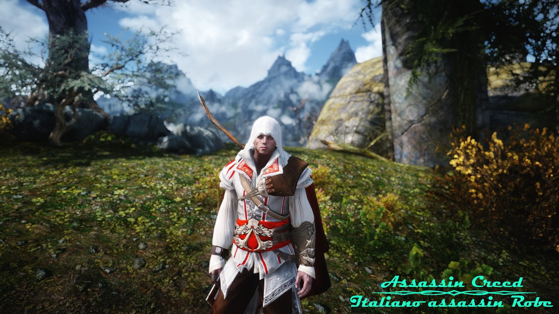 Assassin's_Creed_2_Italiana_assassin_Robe_L.jpg