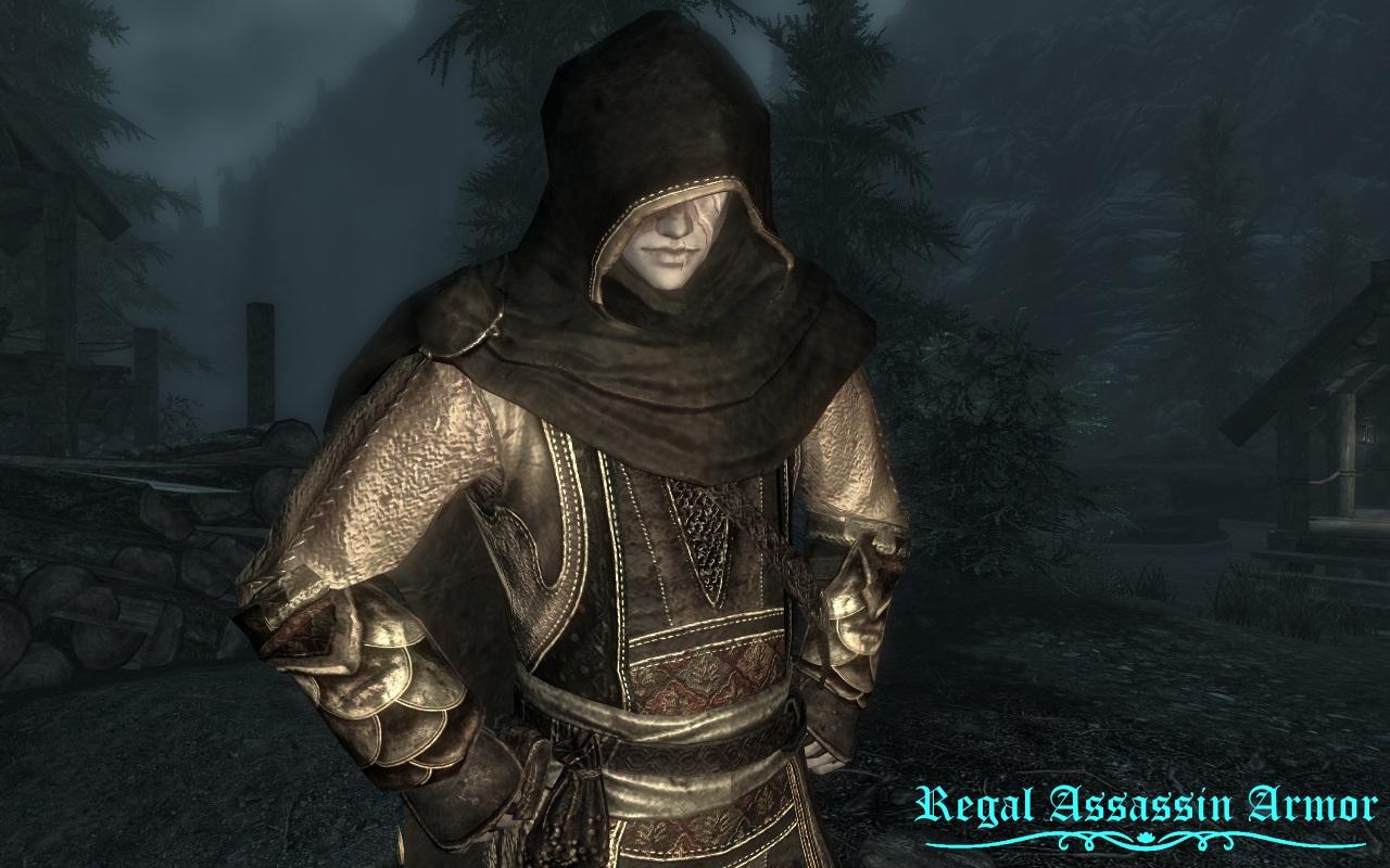 Dream_Burrows_Regal_Assassin_Armor.jpg