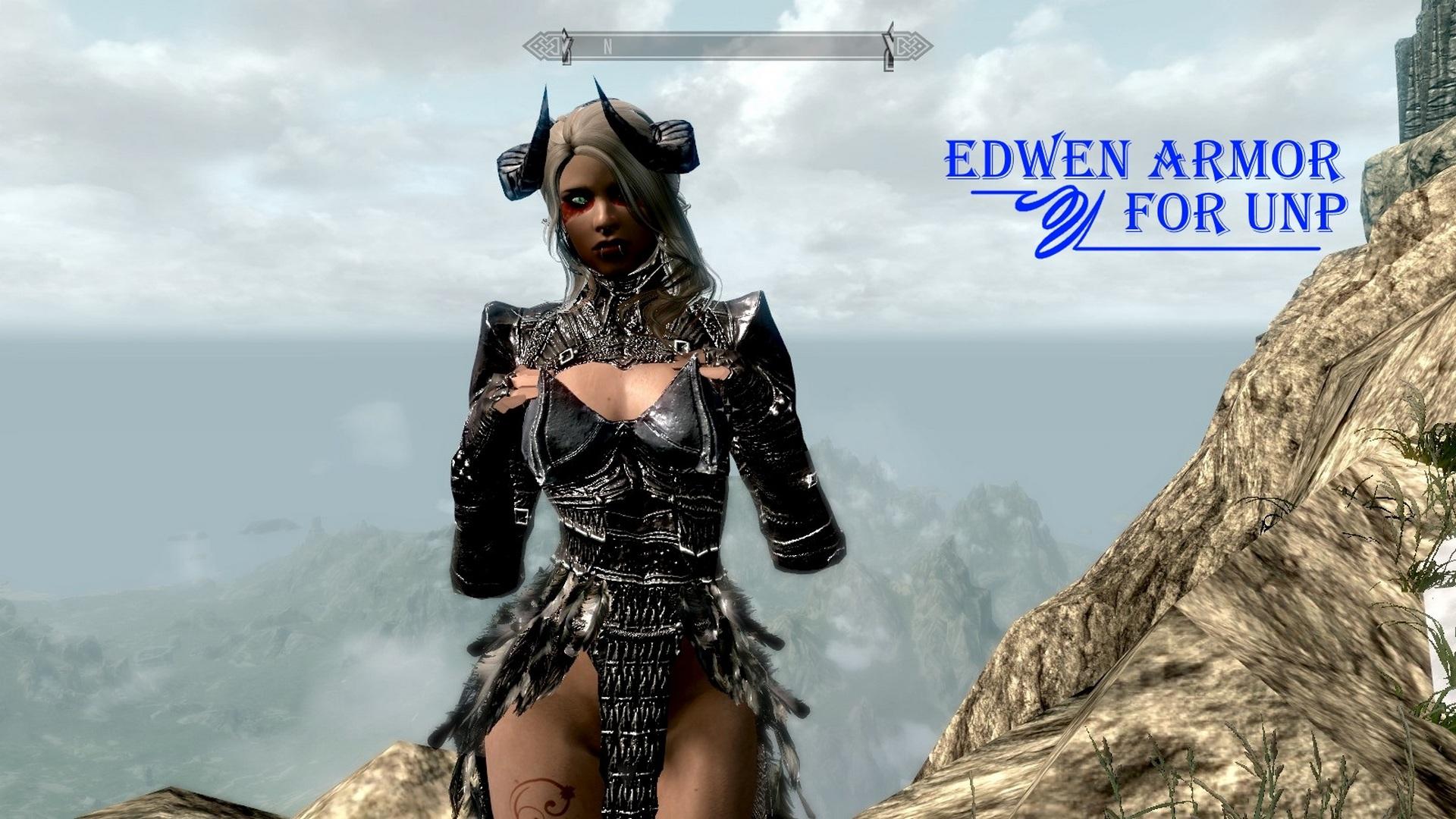 Edwen_armor_for_unp.jpg