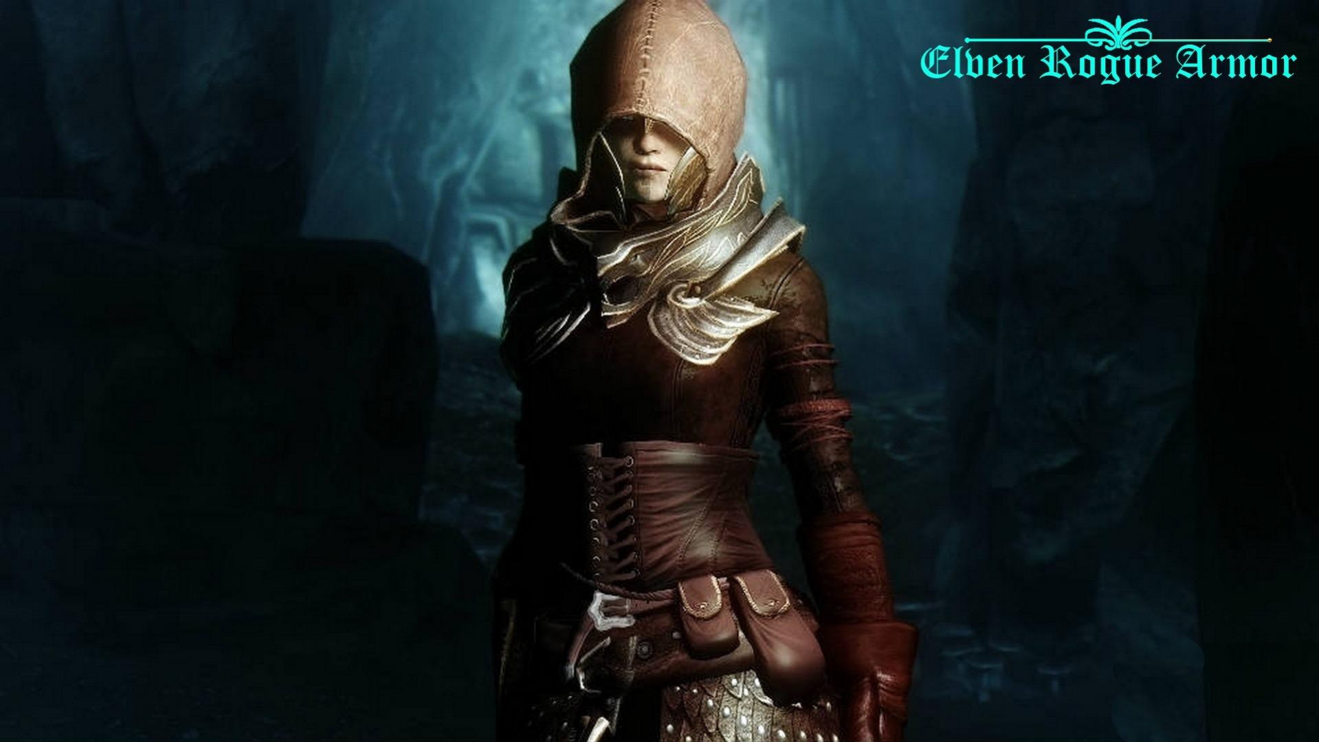 Elven_Rogue_Armor.jpg