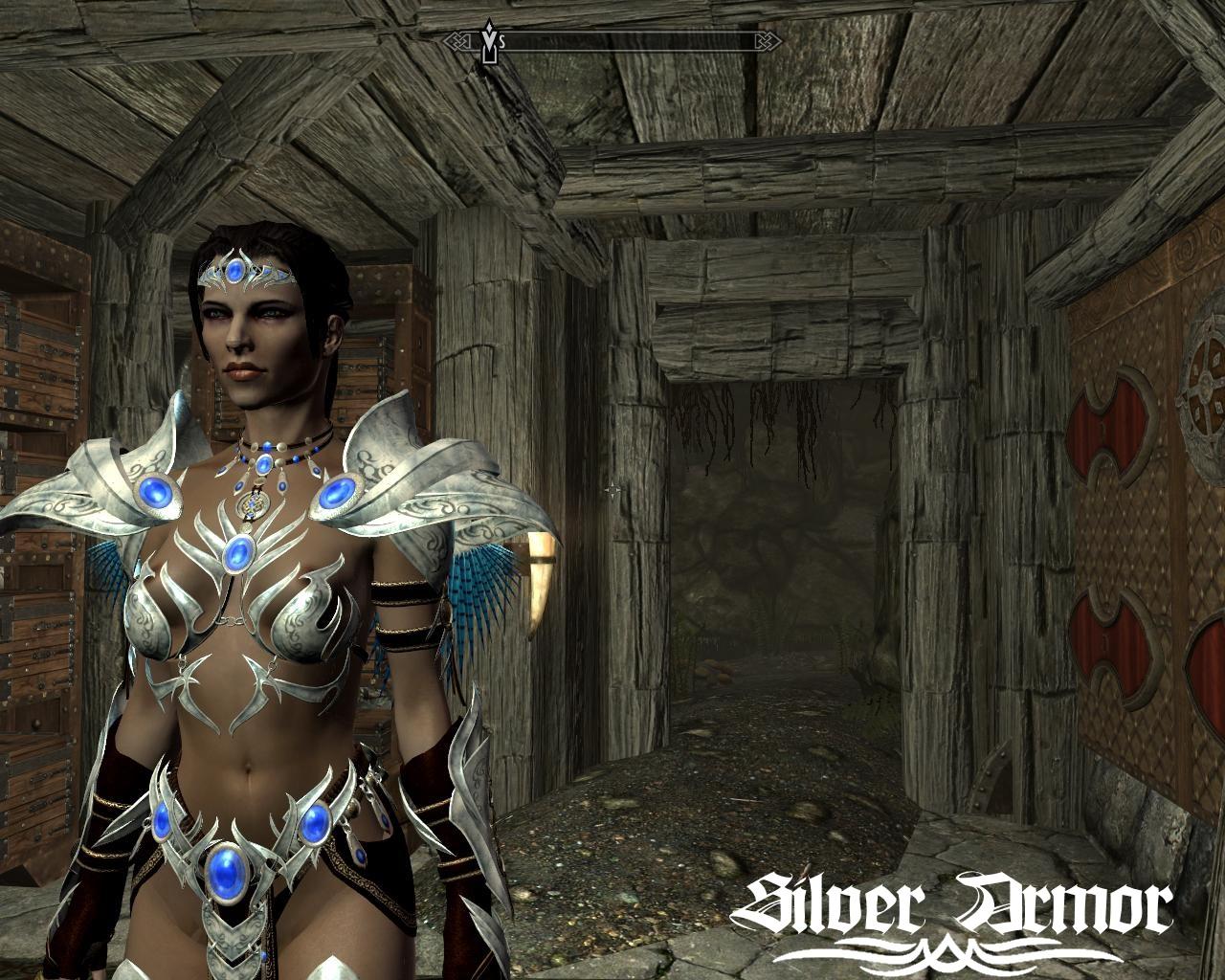 Silver_Armor.jpg