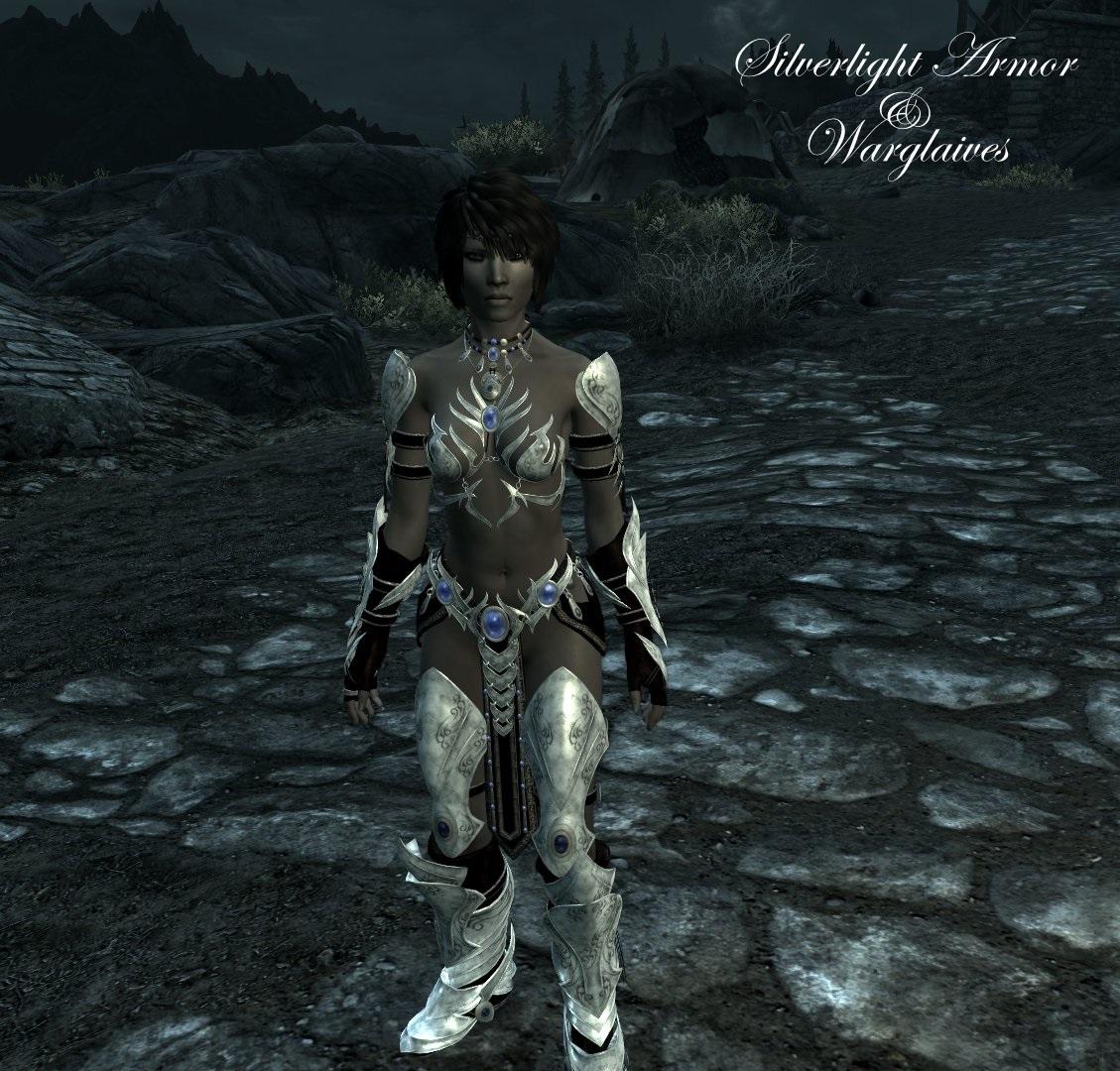 Silverlight_armor_&_Warglaives.jpeg
