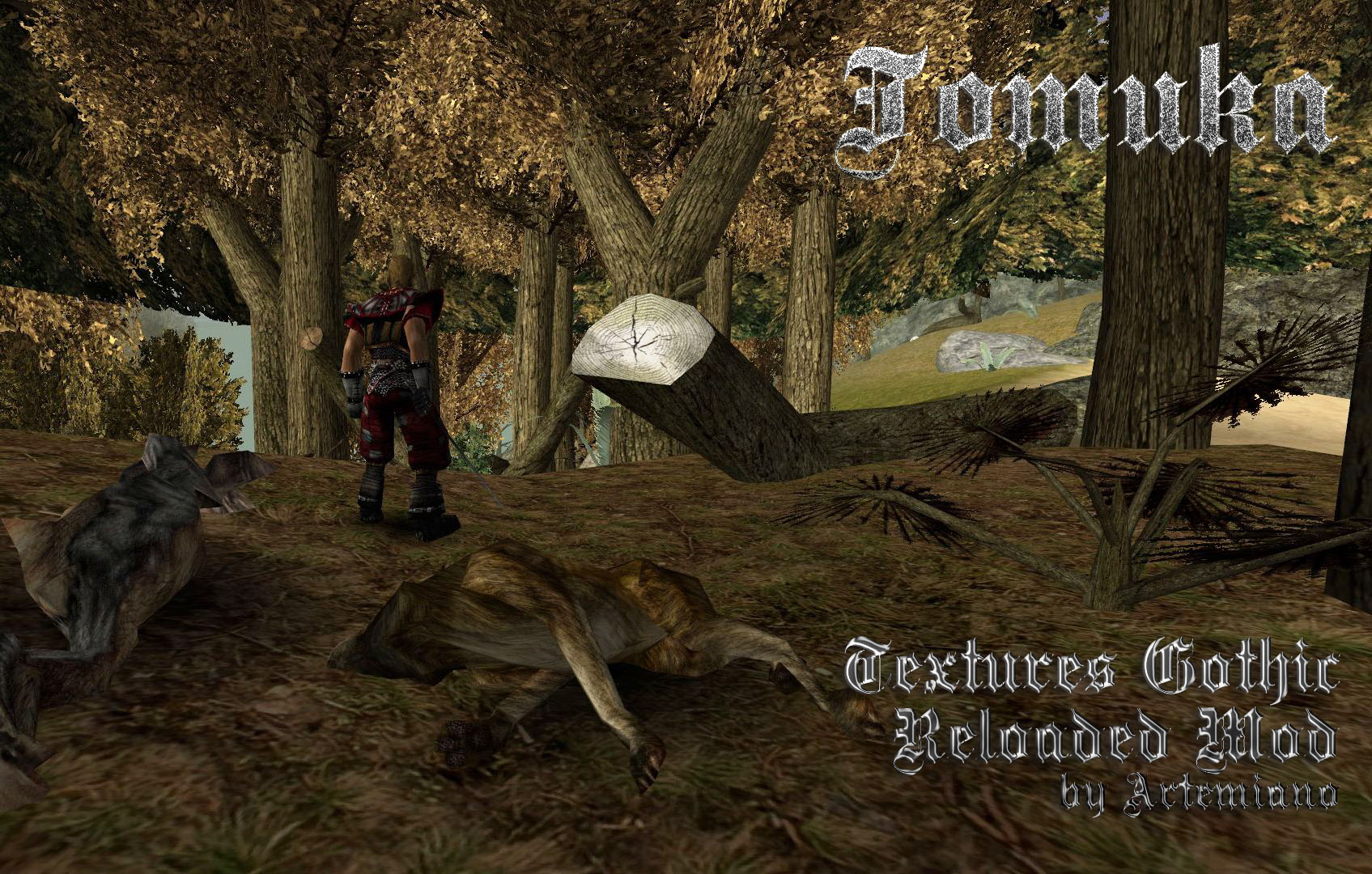 Textures Gothic Reloaded Mod by Artemiano.jpg