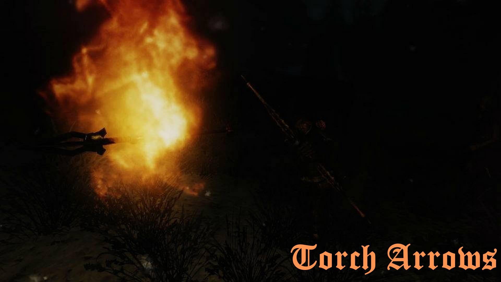 Torch_Arrows_01.jpg