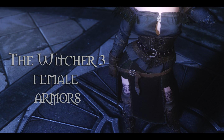 Witcher 3 Female Armors 00.jpg