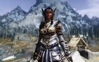 Armors of Dragon Champion_07.jpg