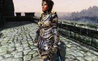 Armors of Dragon Champion_04.jpg