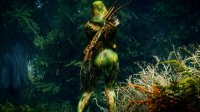 Bosmer_Ceremonial_Armor_10.jpg