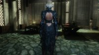 Edwen_armor_for_unp_04.jpg