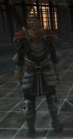 Dragon_Age_2_Hero_07.jpg
