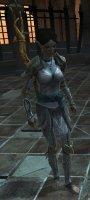 Dragon_Age_2_Hero_02.jpg