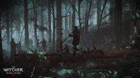 Witcher3_RPGPlays_56.jpg