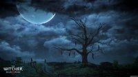 Witcher3_RPGPlays_41.jpg