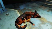 Dogmeat-Texture-Fallout4-2.jpg