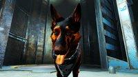 Dogmeat-Texture-Fallout4-3.jpg