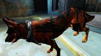 Dogmeat-Texture-Fallout4-6.jpg