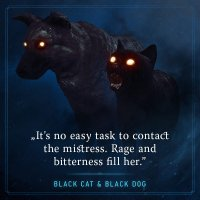 The Black Cat & Dog.jpg