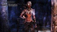 Lady_Templar_02.jpg