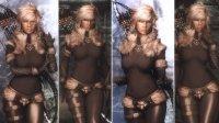 Northgirl_Armor_UNP_and_the_Retexture_06.jpg