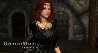 Opulent_Outfits_Maids_and_Merchants_04.jpg