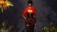 Scarlet_Dawn_Armor_04.jpg