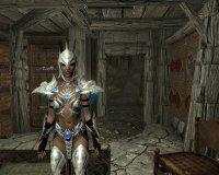 Silver_Armor_01.jpg