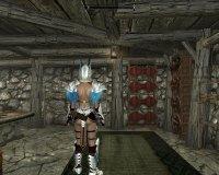 Silver_Armor_02.jpg