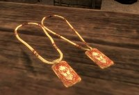 Amulets_of_Skyrim_02.jpg