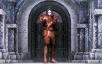 Ancient_Dragon_Knight_Armor_04.jpg