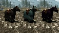 Horse_Cloaks_02.jpg