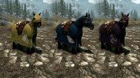 Horse_Cloaks_03.jpg