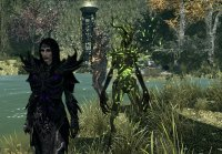 LifeSong_The_Grove_Matron_Staff_04.jpg