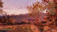 Optimized Fallout 76 INIs - 03.jpg