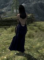Shanoa_Armor_04.jpg