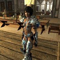 Silverlight_armor_&_Warglaives_03.jpeg