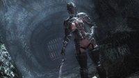 The Amazing World of Bikini Armor 35.jpg