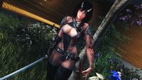 The Amazing World of Bikini Armor 47.jpg