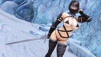 Wolf Bikini Armor 18.jpg