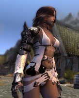 Wjun Lady armor_ 07.jpg
