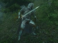 Armor Of The Wolf 02.jpg