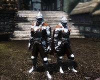 BDO Bern Armor 01.jpg