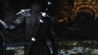 [DB] Wolf Armor 07.jpg