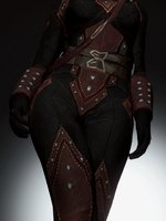 Dark Brotherhood HD armor retexture 05.jpg