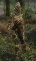 Armor Of Shadows 04.jpg
