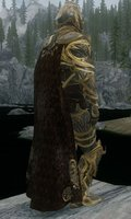 Armor Of Shadows 08.jpg