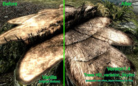 Trees HD_Skyrim_Variation 04.jpg