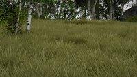 Green Grass 03.jpg