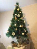 fir-tree-4.jpg