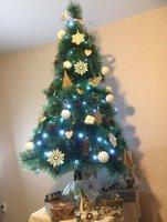 fir-tree-5.jpg
